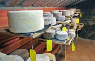 CHEESE COUNTRY, The Applewood Manor